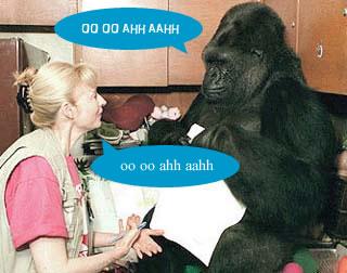 monkeyTalk.jpg
